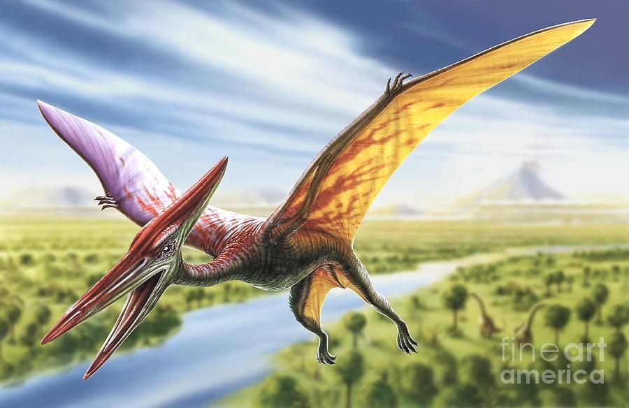 pterodactyl-adrian-chesterman_54f6
