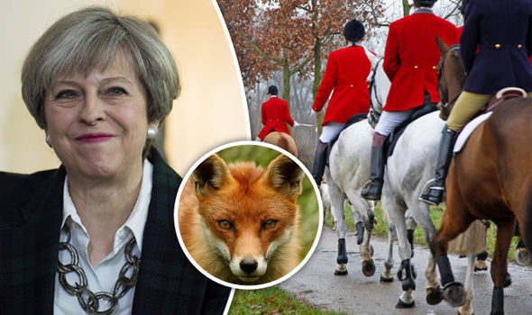 fox-hunting-election-issue-theresa-may-campaign-blood-sports-802801