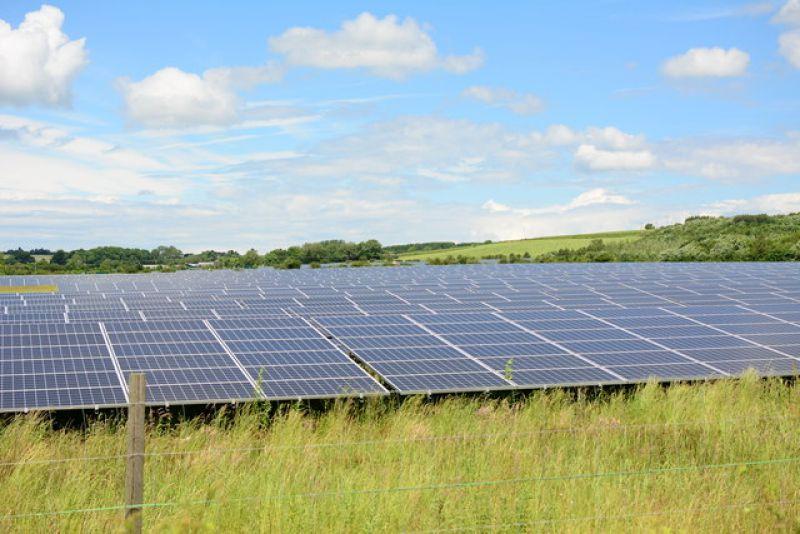 generic_green_solar_farm_800_534_80_s_c1