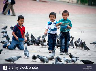 three-young-boys-feed-the-pigeons-in-central-square-in-fusagasuga-DEHY4J